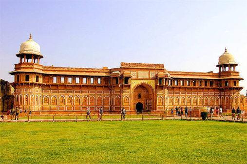 Agros Fortas, Indija